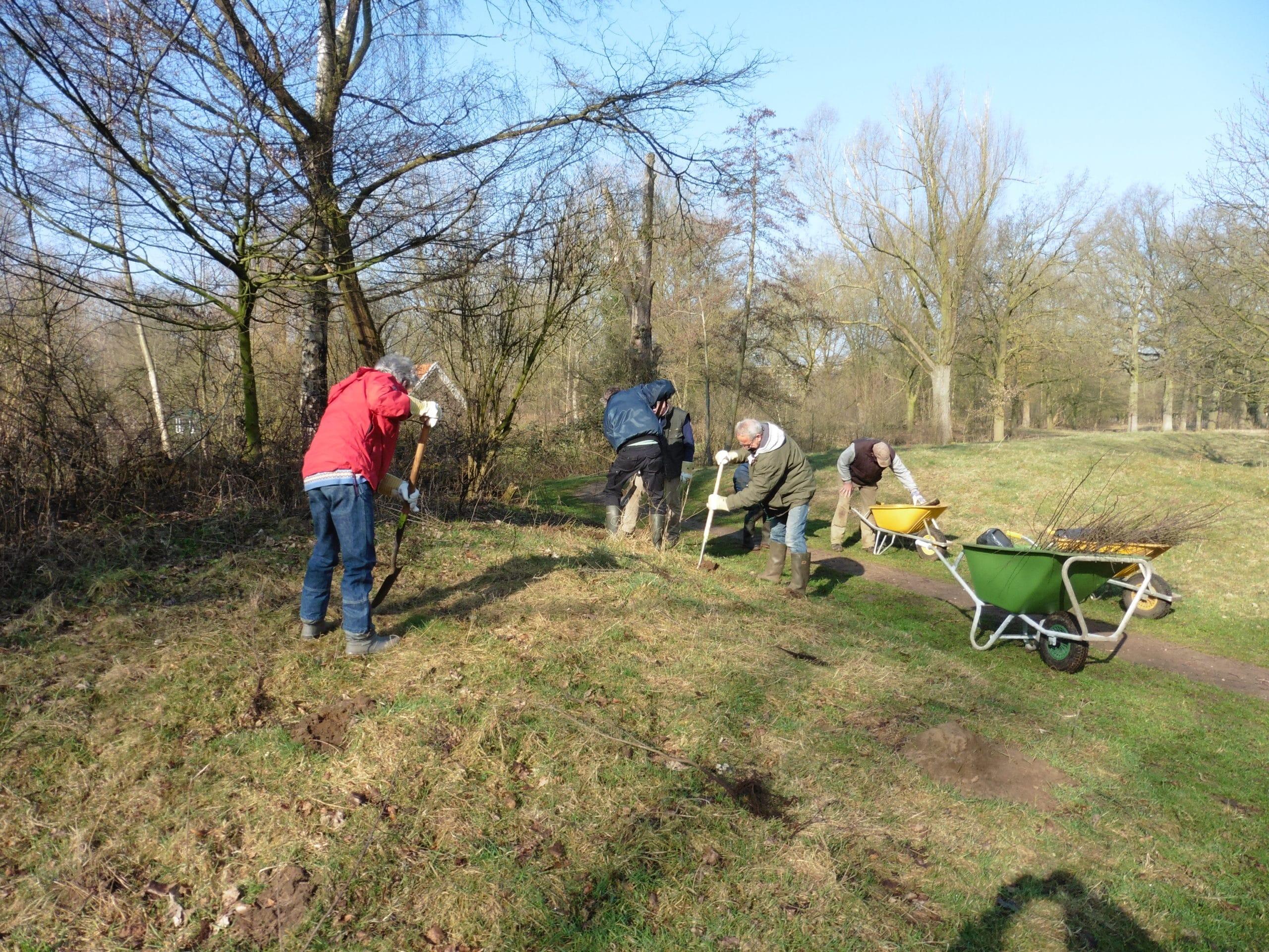 Buur maakt Natuur - De Groene Knoop - Planten struiken