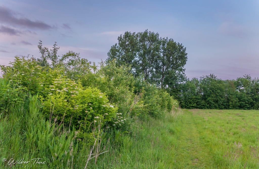 Natuurterrein 't Knapperslag - Buur maakt Natuur