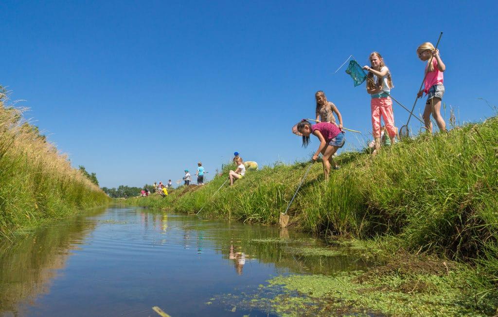 Buur maakt Natuur waterdiertjes vangen op 't Knapperslag